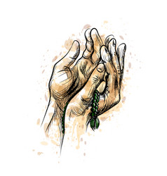 Praying hands with rosary hand drawn sketch vector