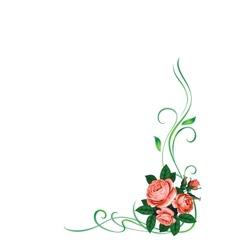 roses frame pattern background vector image