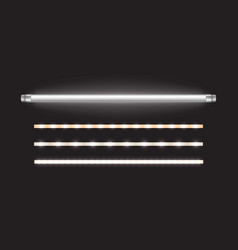 tube lamp and led strips long fluorescent bulb vector image