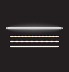 Tube lamp and led strips long fluorescent bulb vector