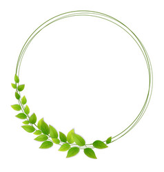 wreath of fresh green leaves vector image