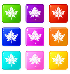 maple leaf icons 9 set vector image vector image