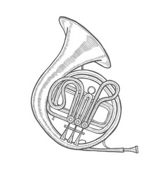 French horn in hand-drawn style vector