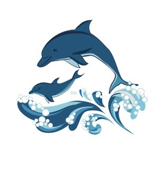 Dolphins vector image