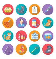 veterinary care icon set vector image