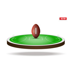 Australian rules football field stadium vector
