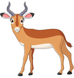 cartoon impala vector image