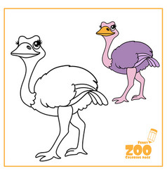 cute cartoon ostrich color and outlined on a vector image
