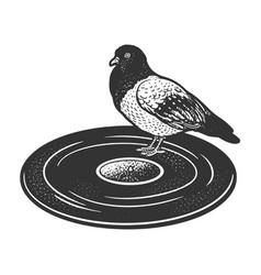 dove on vinyl disc sketch vector image