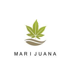 Marijuana medicine logo vector