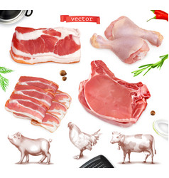 meat food beef pork chicken legs 3d realistic set vector image