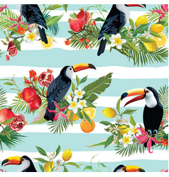 tropical fruits flowers and toucan background vector image vector image