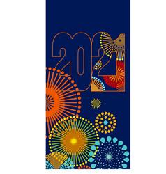 2021 firework vector image