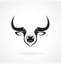 bull head design on white background wild vector image