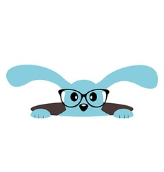 Cute bunny with glasses in a hole Isolated vector