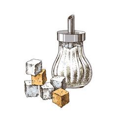 Hand drawn sugar bowl and sugar cubes vector