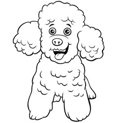Poodle toy dog cartoon animal character coloring vector