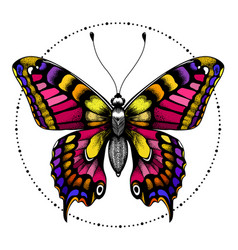 Tattoo butterfly in circle beadst-shirt design vector
