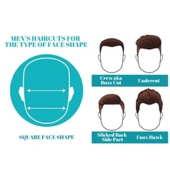 square face shape vector image