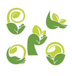 hand and leaves vector image vector image