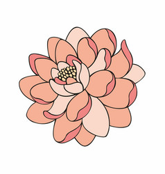 beautiful flower for design vector image