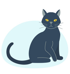 cute black cat character funny animal domestic vector image