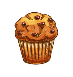 Muffin with raisins bakery product sketch vector