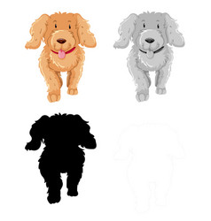 Set poodle character vector