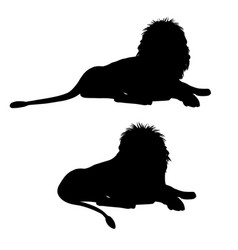 silhouettes of a lying lion vector image