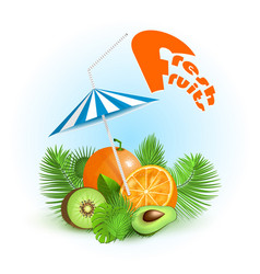 summertime tropical fresh fruits drinking juice vector image