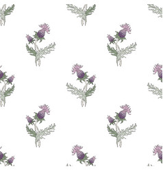 thistle spike flower hand drawn seamless pattern vector image