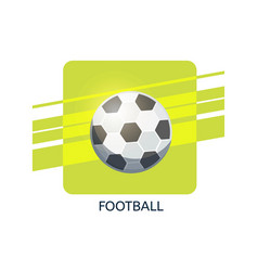 football icon vector image vector image