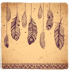 Beautiful of feathers vector