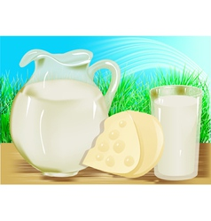 Cheese milk jug vector image