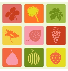 Nature pictures set vector