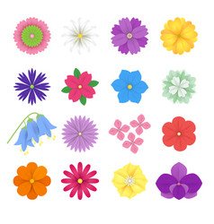 set colorful paper flowers white background vector image