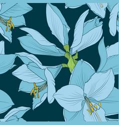 hippeastrum amaryllis seamless pattern blue navy vector image vector image