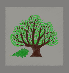 Flat shading style plant quercus vector