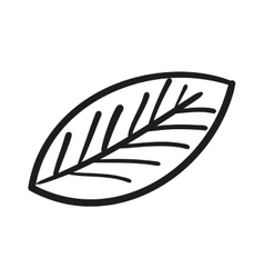 Leaf drawing isolated icon vector