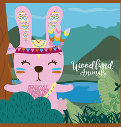 Rabbit woodland animals vector