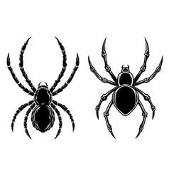 Set dangerous spider in vintage monochrome vector