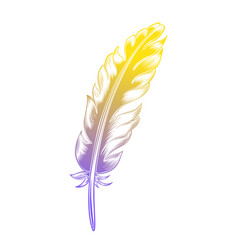 Vintage color feather vector
