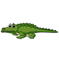 wild crocodile with happy face vector image