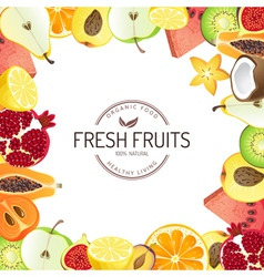 Bright background with fresh fruits vector image vector image