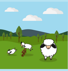 sheep jumping over a fence in a grassy field vector image