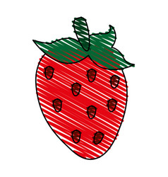 Delicious strawberry icon imag vector