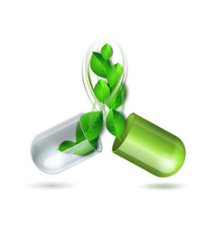 Green natural medical pill with leaves vector