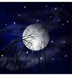 Moon night landscape vector