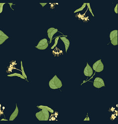 natural seamless pattern with flowering linden vector image