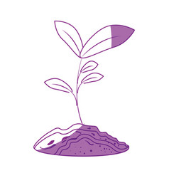 Plant growing icon vector